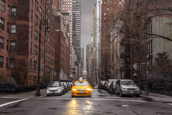 Assaf Frank - New York Taxi (24x36) - ARC00541