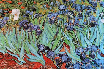 Vincent van Gogh - 'Irises' (24x36) - FAR36306