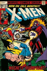 X-Men vs Magneto (24x36) - FLM51148