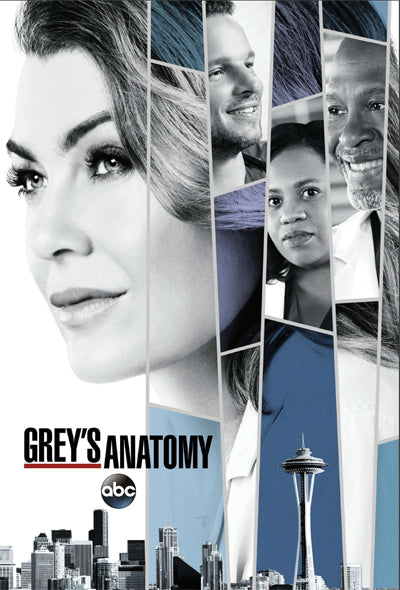 PENDING APPROVAL Grey's Anatomy (24x36) - FLM95102