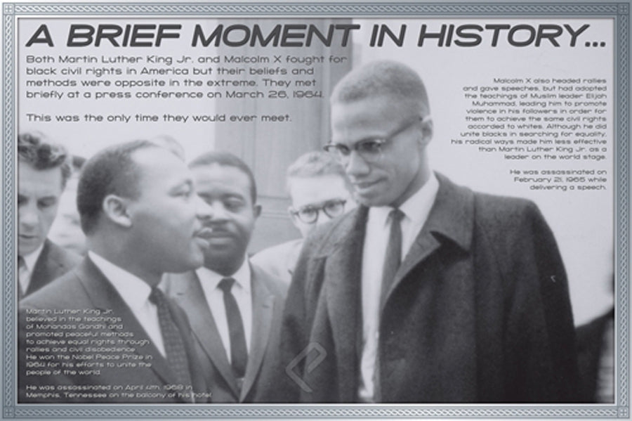 Malcolm X and Martin Luther King  ISP00002   24 X 36