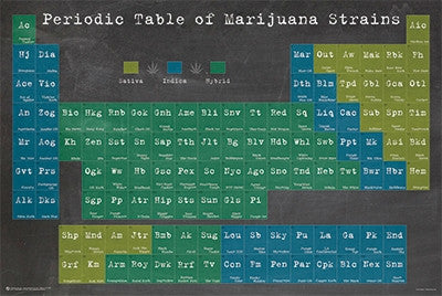 Periodic Table of Marijuana Strains (24x36) - POT10885