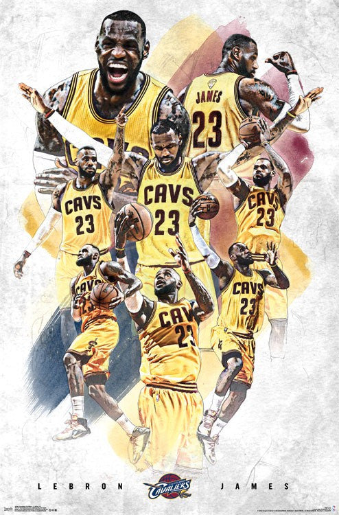 Lebron James Collage (24x36) - SPT14304