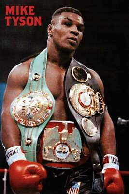 Mike Tyson Belt - 24 x 36 - SPT56789