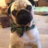 (Grass Green) Harris Tweed Bow Tie Dog Collar - Grass Green Check - BOWZOS