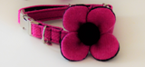(Roxburghe) Harris Tweed Flower Dog Collar - Bubblegum Pink - BOWZOS