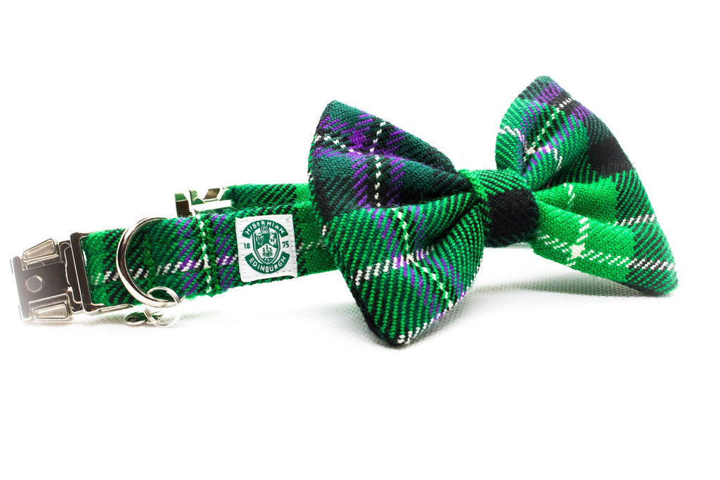The Hibernian FC Bowzos Dog Bowtie Collar - BOWZOS