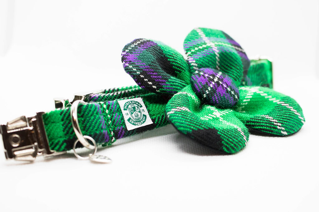 The Hibernian FC Bowzos Dog Flower Collar - BOWZOS