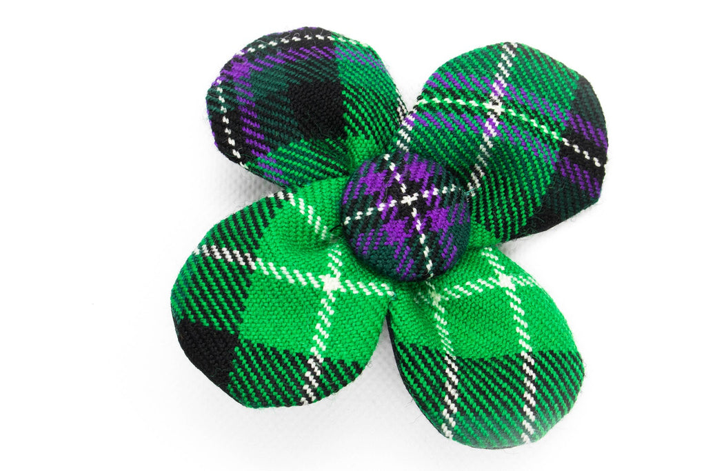The Hibernian FC Bowzos Dog Flower Accessory - BOWZOS