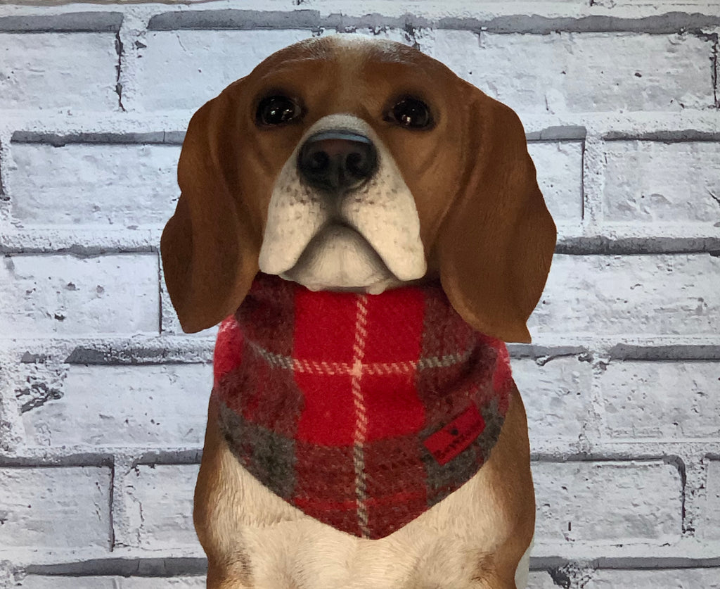 (Brodie) Scruffneck - Red/Grey Check - BOWZOS
