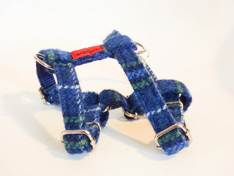 (St Andrews) Harris Tweed Harness - Blue & White Check - BOWZOS