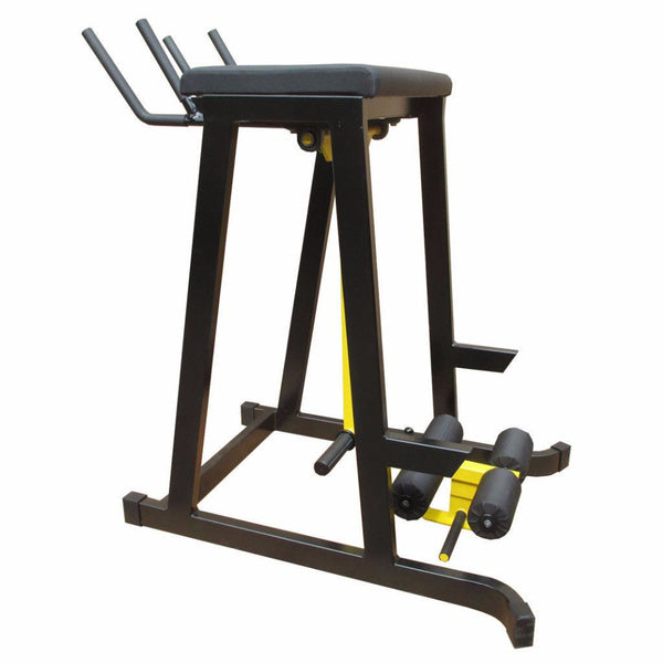 Reverse Hyperextension Machine for Lower Back