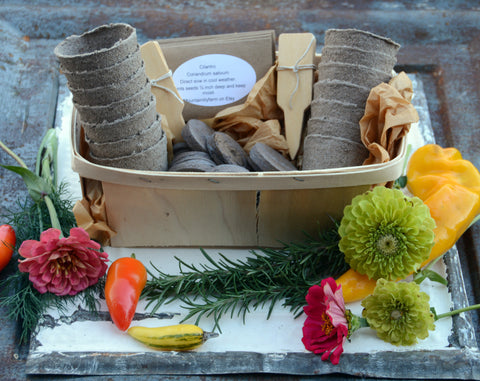 Garden Gift Set Heirloom Vegetable and Flower Seeds