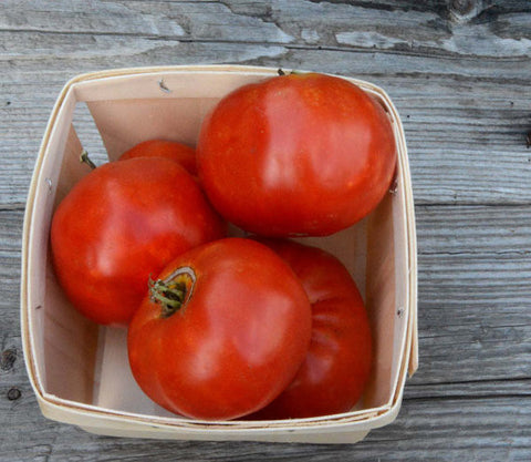 Heirloom Beefsteak Tomato Seeds