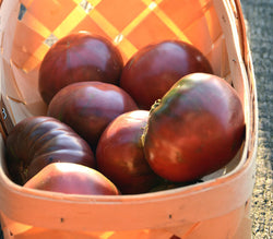 Black Krim Heirloom Tomato Seeds