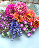 5 Seed Varieties for Cut Flowers