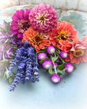 Lavender Seeds and Zinnias for Cut Flower Gardens