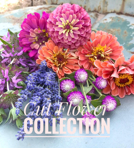 Cut Flower Garden Seeds