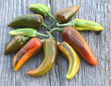 Heirloom Hot Pepper Fish Peppers Seeds