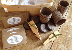 Herb Seed Kit in Gift Basket