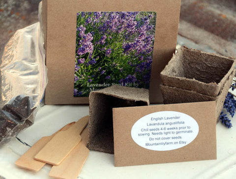 Lavender Garden Seed Kit Mountainlily Farm