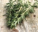 Fragrant Herb Garden Rosemary