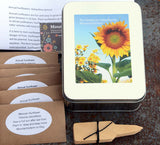 Mountainlily Farm Heirloom Sunflower Garden Kit