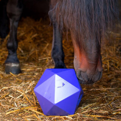 Dripfeed Horse Treat Ball