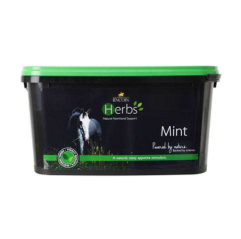 Lincoln Herbs Mint-600g