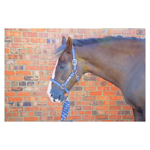 Hy Tartan Headcollar with Lead Rope