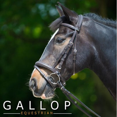 Gallop Comfort Bridle and Reins
