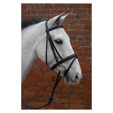 Hy Padded Bridle with Flash