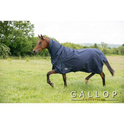 Gallop Light-weight Combo Turnout Rug