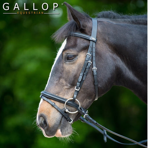Gallop Bridle and Reins