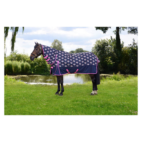 Storm X Unicorn 200 Combo Turnout Rug