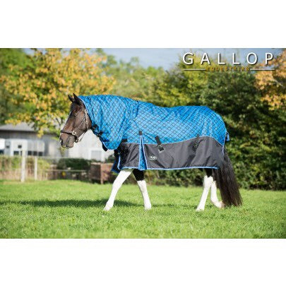 Gallop 450 Diamond Combo Turnout Rug