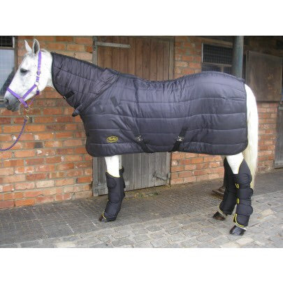 Gallop Maverick 150 Dual Stable Rug