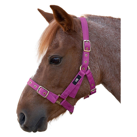Hy Fully Adjustable Holly Headcollar