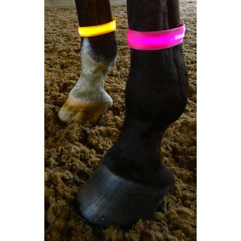 Equisafety Leg/ Arm Band