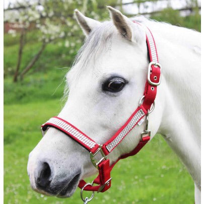Gallop Diamanté Headcollar