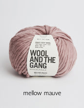 Load image into Gallery viewer, Crazy Sexy Wool by Wool and the Gang (super bulky)