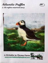 Load image into Gallery viewer, Needle Felting Kits by A Wrinkle in Thyme Farm