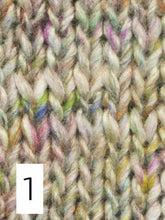 Load image into Gallery viewer, Noro Silk Garden & Silk Garden Solo (dk/light worsted)