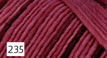 Load image into Gallery viewer, Lamb's Pride Worsted by Brown Sheep Company
