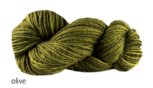 Load image into Gallery viewer, Manos del Uruguay Wool Clasica (aran)