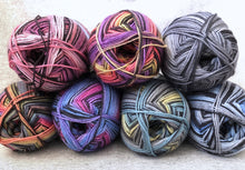 Load image into Gallery viewer, group of Berroco Sox sock yarn