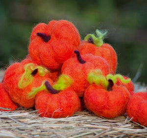 Needle Felting Pumpkin Kit from Integrity Farm