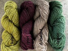 Load image into Gallery viewer, Swans Island All American (worsted/aran)