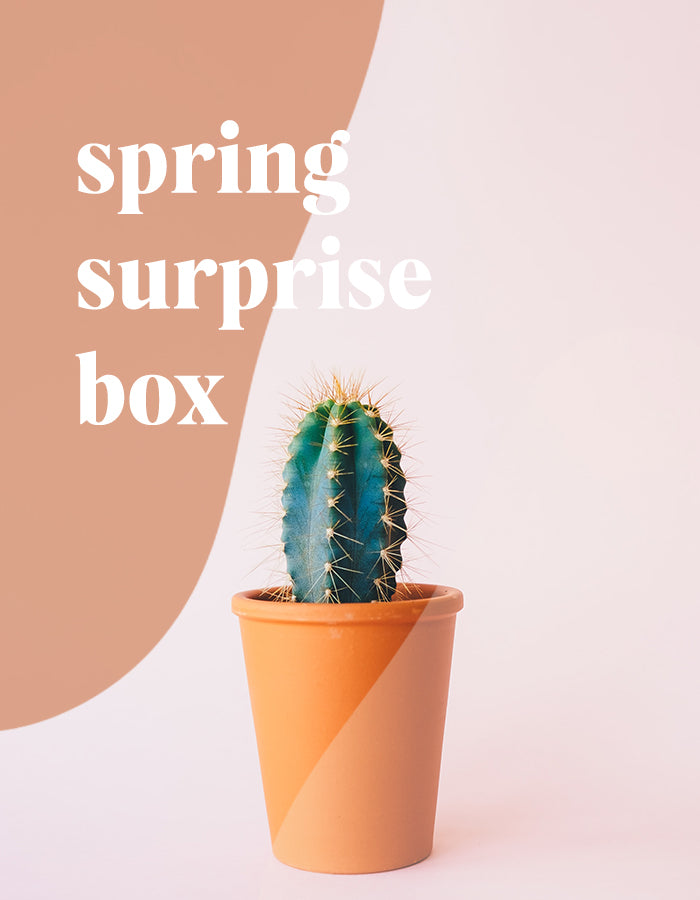 Spring Surprise Box 2020 - Chalkfulloflove