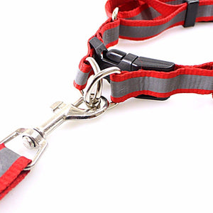 Nylon Bright Lightweight & Reflective Dog Leash With Extra Strong Harness Pet 3199 (Large Letter Rate)